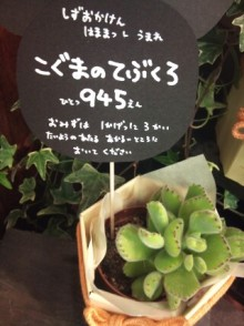MJ☆(DEEP UNDERWATERのVo.)の音楽と女子力と!-1298632293-picsay.jpg